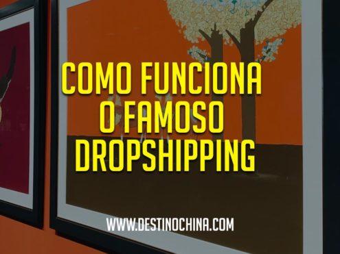 Como-funciona-o-famoso-dropshipping