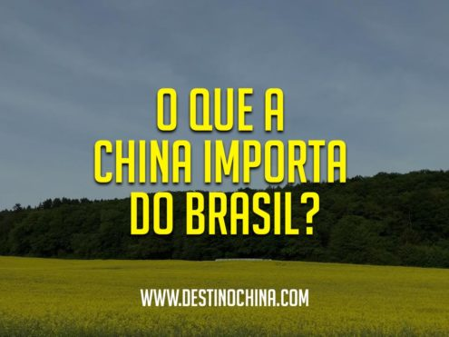 oque-a-china-importa-do-brasil